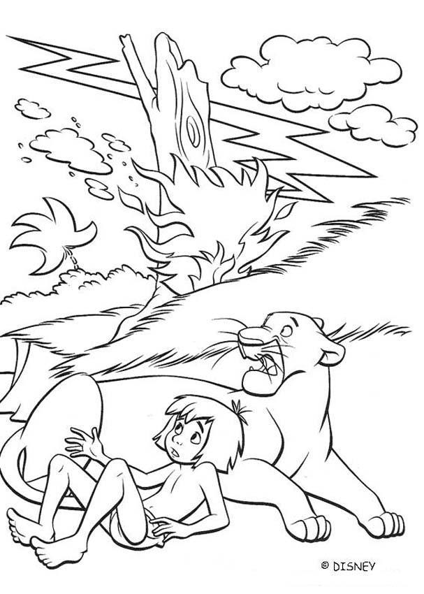 Dschungelbuch Ausmalbilder Videos Fur Kinder Lesen Basteln