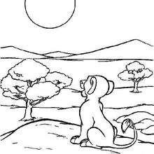 Simba schaut den Mond an
