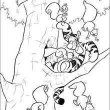 Tiger und die Eichhörnchen