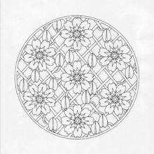 Mandala 179