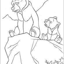 Bärenbrüder 27