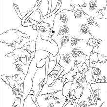 Bambi 14