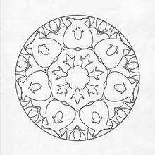 Mandala  77