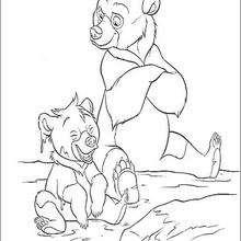 Bärenbrüder  7