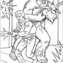 Han Solo und Chewbacca