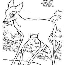 Bambi 37