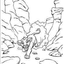 Simba hat Angst