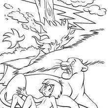 Das Dschungelbuch 47