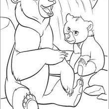 Bärenbrüder 26