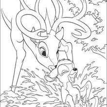Bambi 15