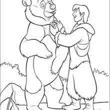 Bärenbrüder 38