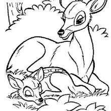 Bambi 29