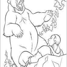 Bärenbrüder 16