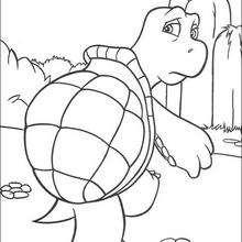 Verne die Schildkröte