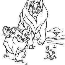 Simba geht mit Timon und Pumbaa
