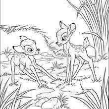 Bambi 50
