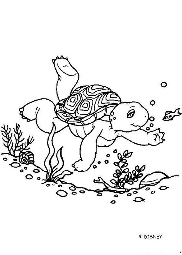 meeresschildkröte zum ausmalen - malvorlagen gratis
