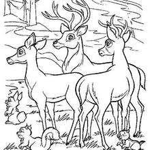 Bambi 46