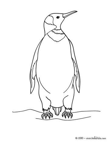 Pinguin zum online Ausmalen