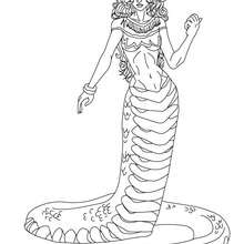 ECHIDNA halb Frau halb Schlange zum Ausmalen