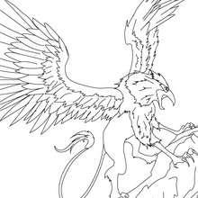 GREIF das mythische Mischwesen zum Ausmalen