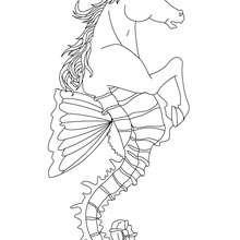 HIPPOCAMPUS halb Pferd halb Fischwesen zum Ausmalen