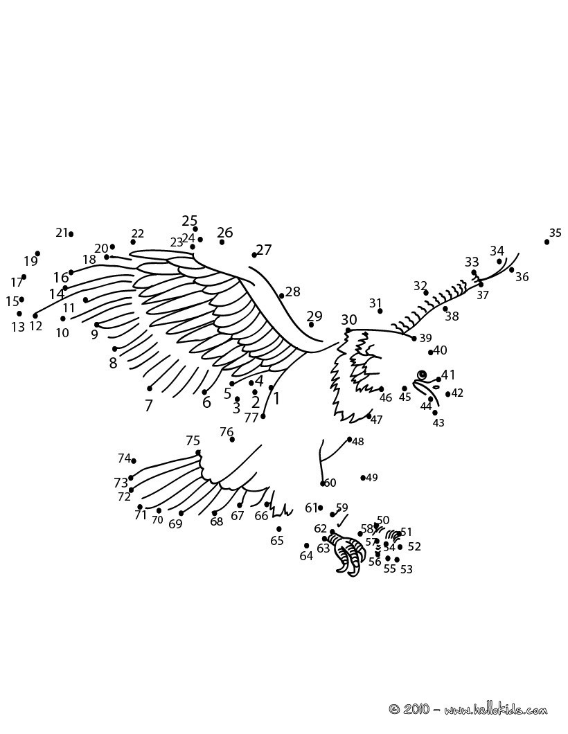 Adler Punkte Umrechnen