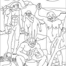 Australopithecus afarensis Gruppe