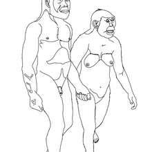 Australopithecus Mann und Frau