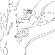 Australopithecus schläft auf Baum