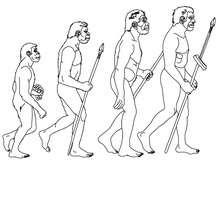 Schritte menschlicher Entwicklung
