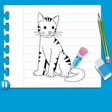 Wie man eine katze malt videoanleitung