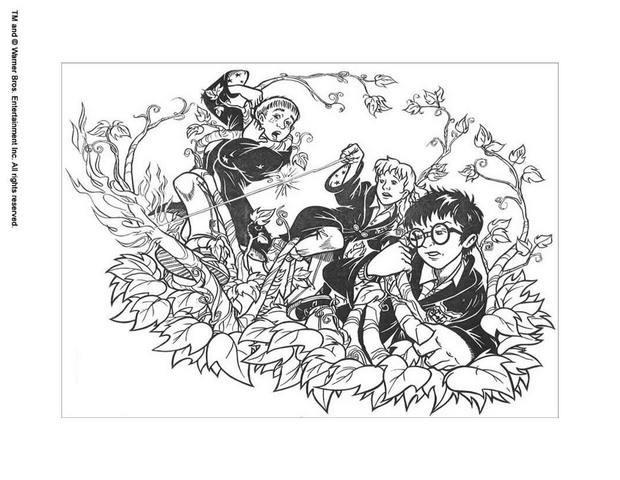 Hermione mit harry zum ausmalen zum ausmalen  dehellokidscom