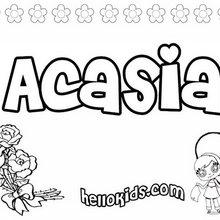 Acasia