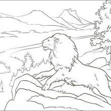 Der Löwe Aslan