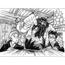 Hagrid und Harry Potter zum Ausmalen
