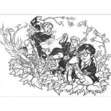 Hermione mit Harry zum Ausmalen