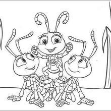 Das große Krabbeln 26