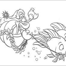 Die Seemuscheln