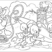 Donald Duck mit Tick, Trick und Track am Strand