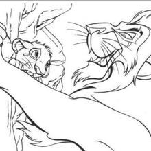 Simba und Scar