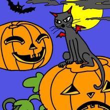 Halloween, SCHWARZE KATZE zum Ausmalen
