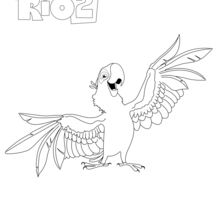 Rio2_BLU_OK