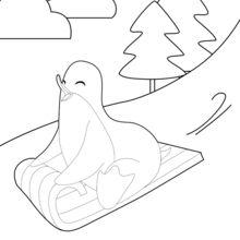 Machen Pinguin Rodeln