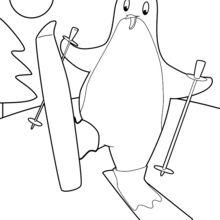 Pinguin Skifahren