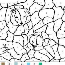 Bärenfamilie Ausmalen nach Zahlen