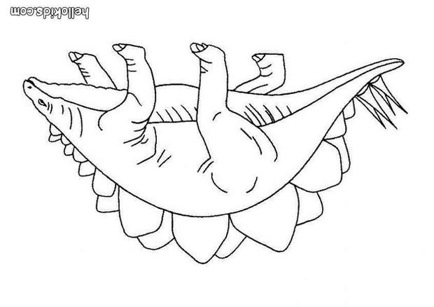 stegosaurus zum ausmalen zum ausmalen - de.hellokids