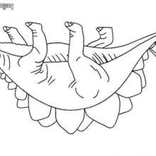 Stegosaurus zum Ausmalen