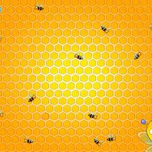Bienen in ihren Bienenstock