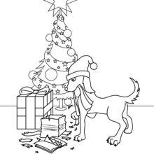 Hund mit Geschenke